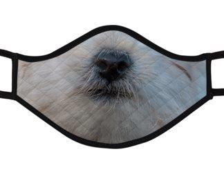 Hundeschnauze2